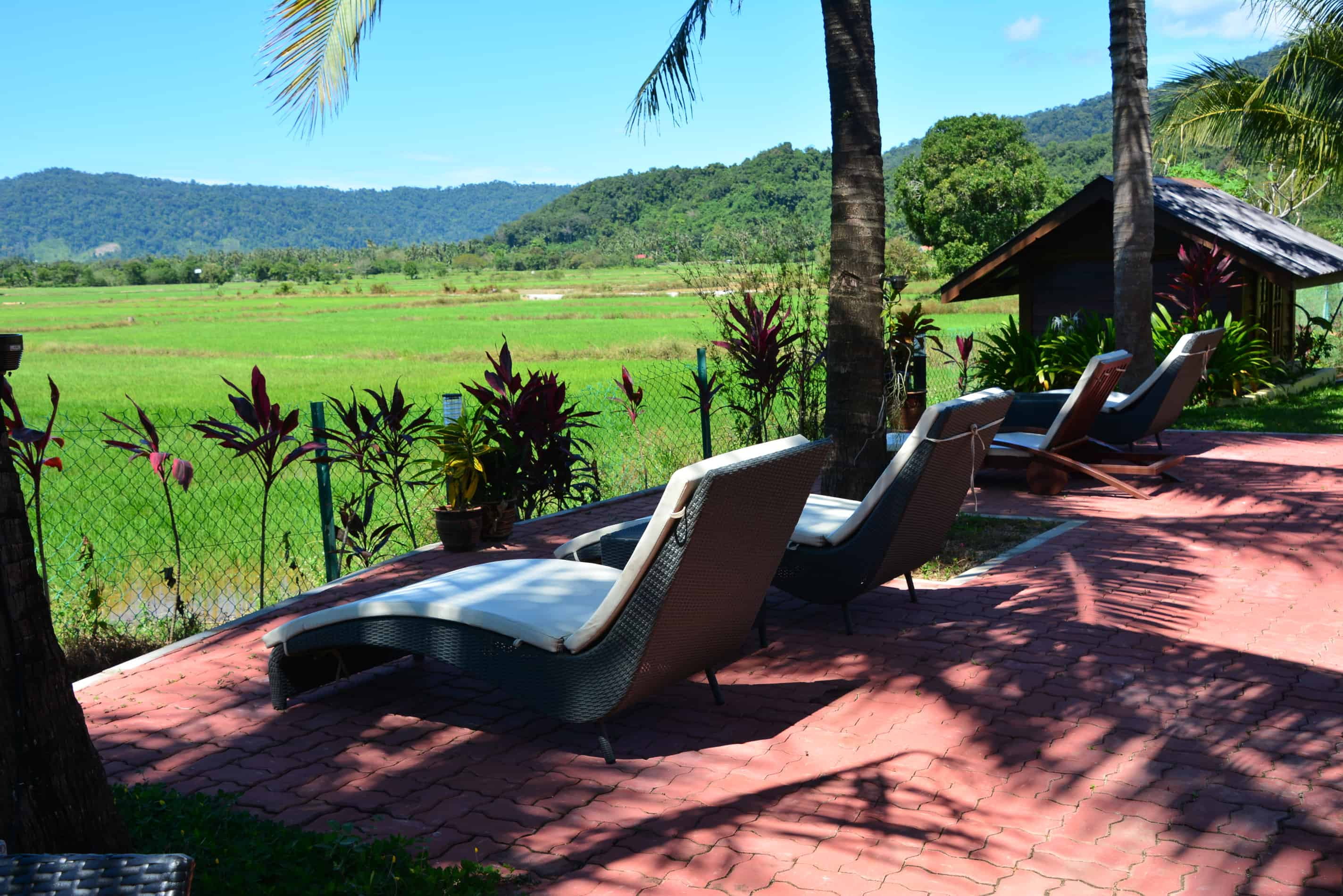 Sunset Valley Holiday Houses - Loungers with a view