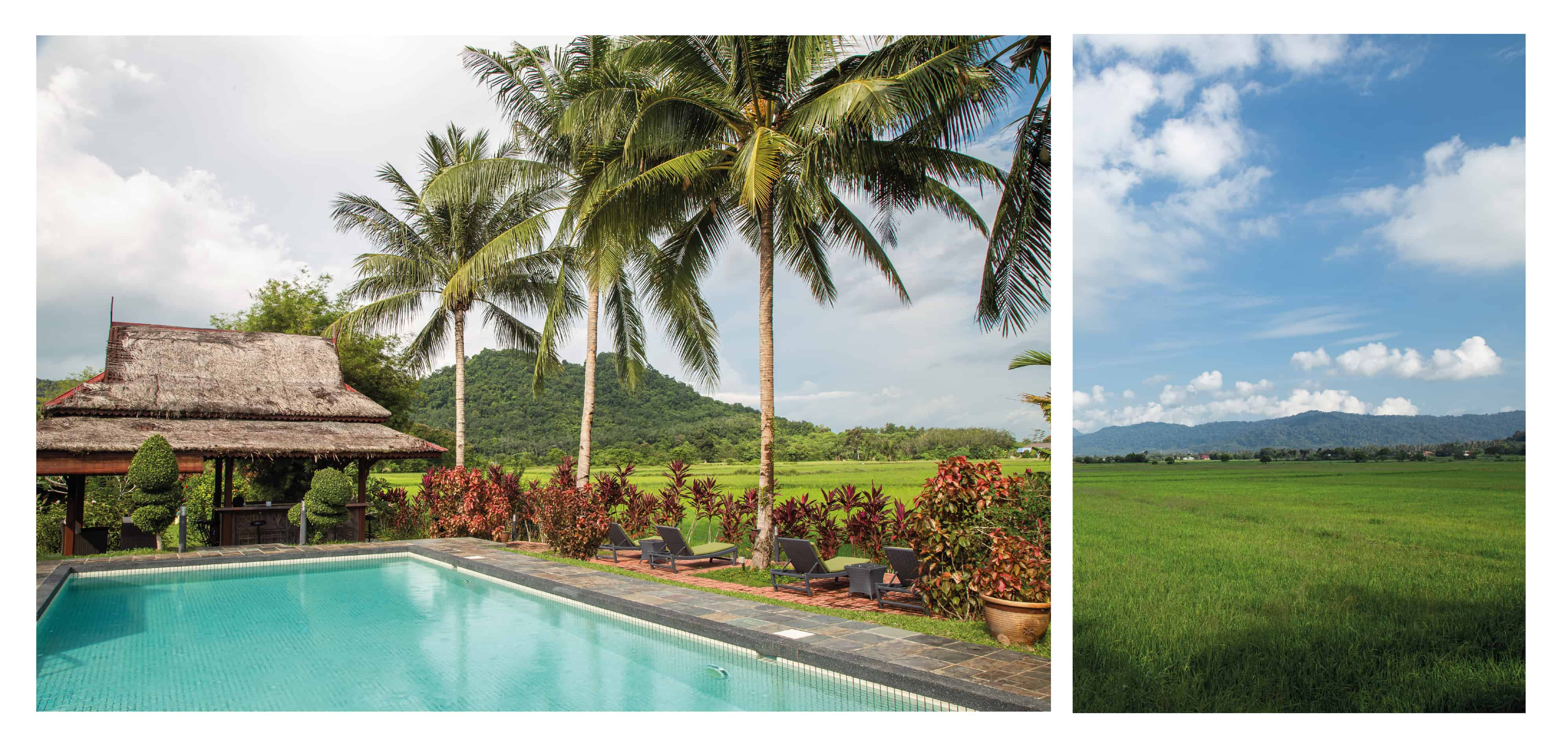 Swimming pool with pavilion and view into the rice fields